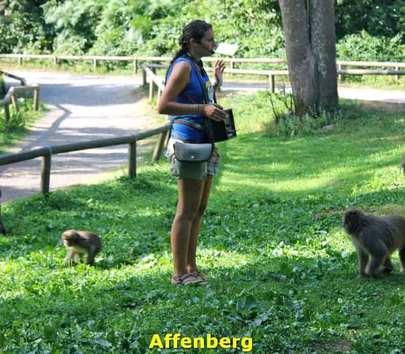 Affenberg- activiteiten-arnoldstein