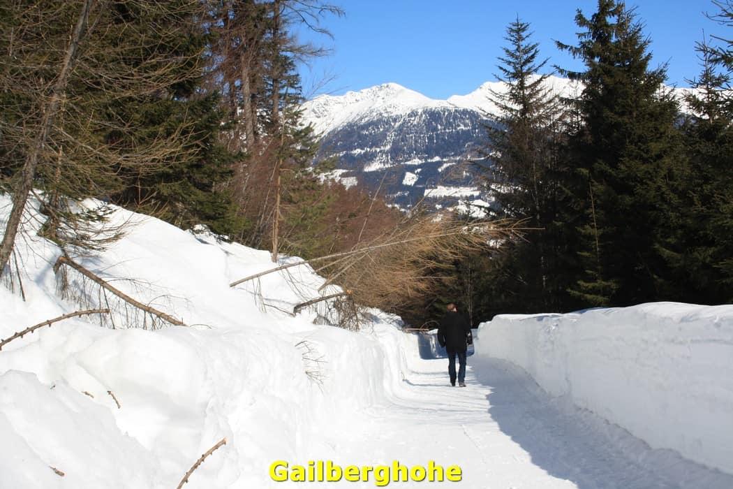 kwo-villa-activiteit-kotschach-karinthie-oostenrijk-02-wandelen-gailberghohe