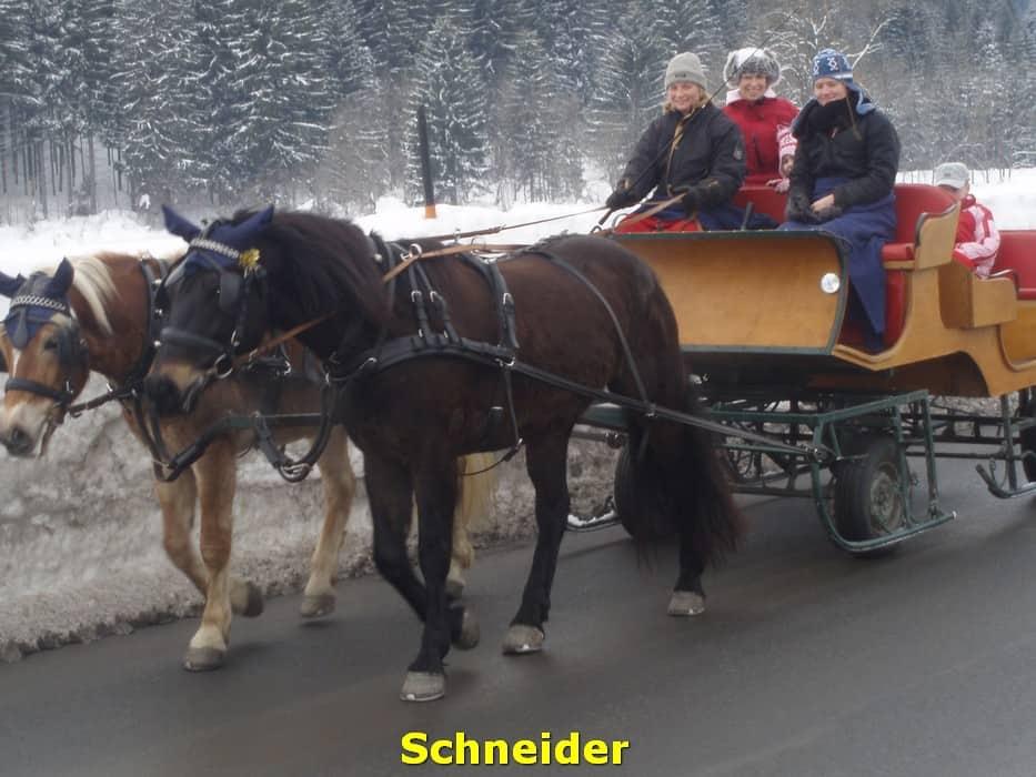 kwo-villa-activiteit-kotschach-karinthie-oostenrijk-11-manege-schneider