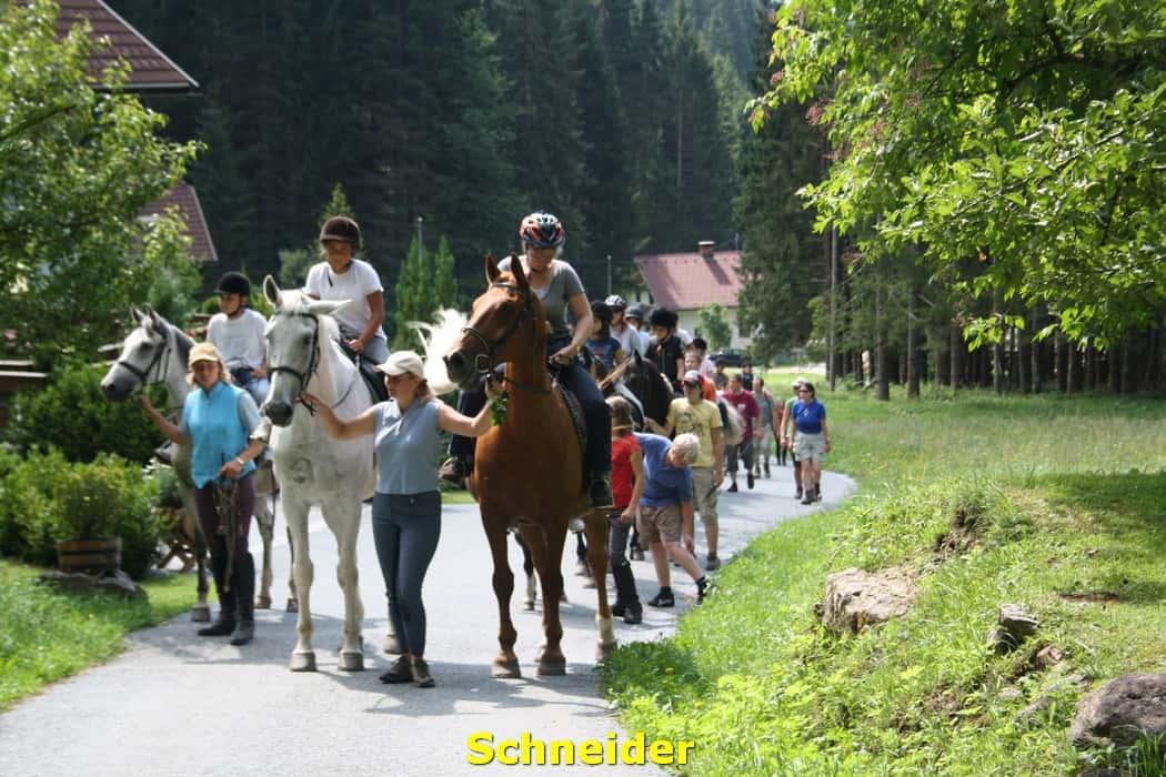 kwo-villa-activiteiten-karinthie-oostenrijk-20-paardrijden-schneider