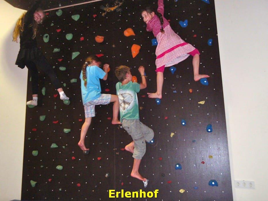 kwo-villa-activiteiten-kinderen-karinthie-oostenrijk-09-klimmen-erlenhof