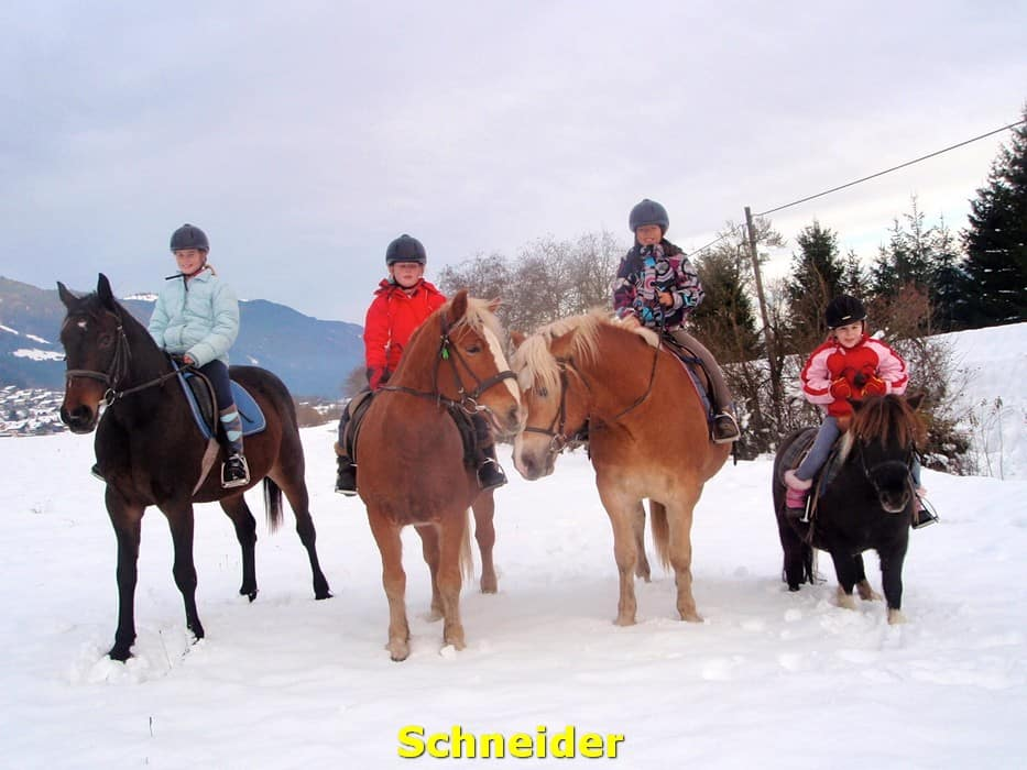 kwo-villa-activiteiten-kinderen-karinthie-oostenrijk-14-paardrijden-manege-schneider