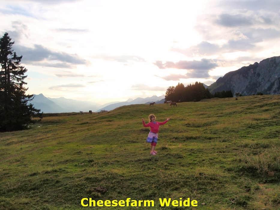 kwo-villa-activiteiten-kirchbach-karinthie-oostenrijk-03-kaasboerderij-weide
