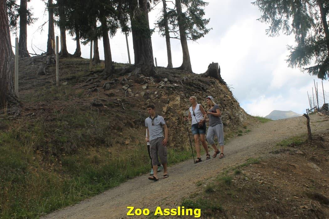 kwo-villa-karinthie-oostenrijk-20-dierenpark-assling